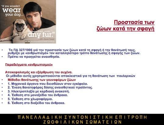 nomothesia 2009 gia ta zoa apo ti dikigoro vaso taki a